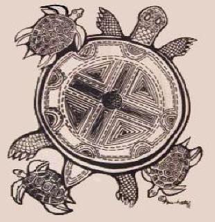 Skywoman's Turtle